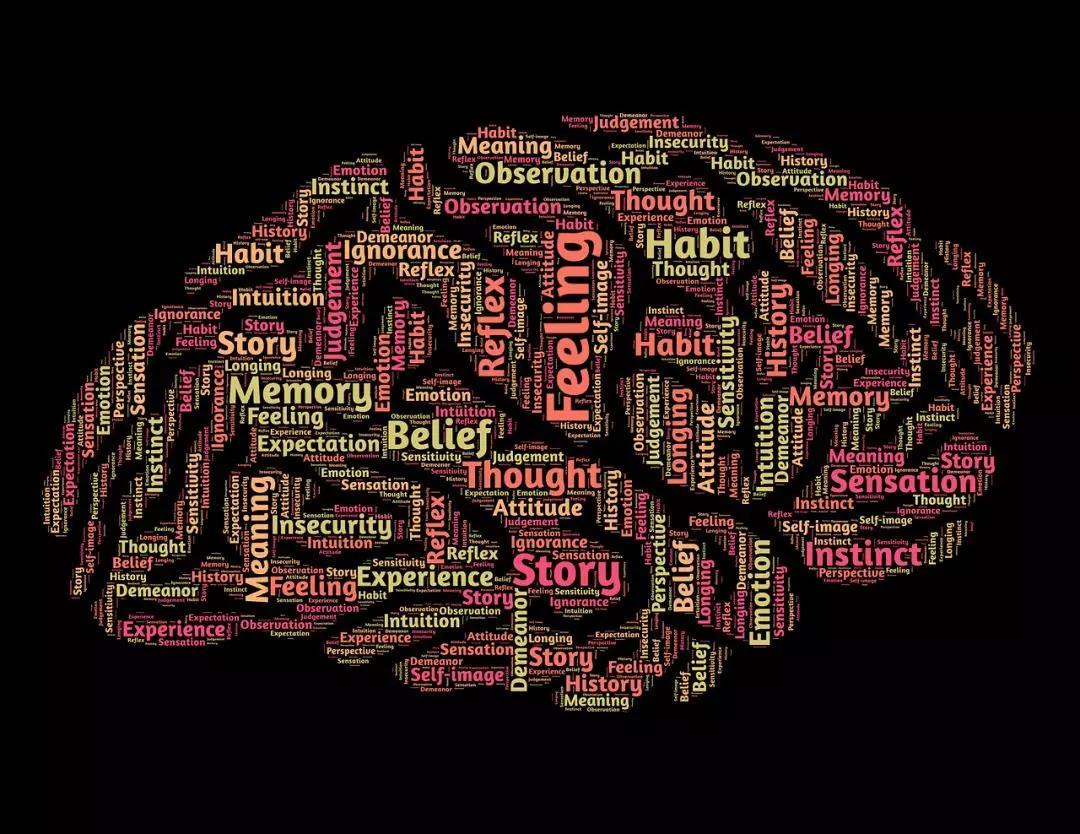 心理学.jpg