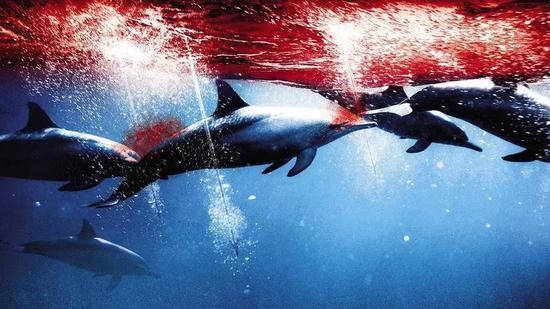 日本捕鲸场景
