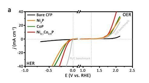 高性能低成本的新型三元纳米片电催化剂