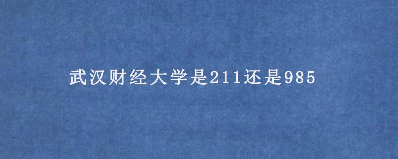 武汉财经大学是211还是985.jpg